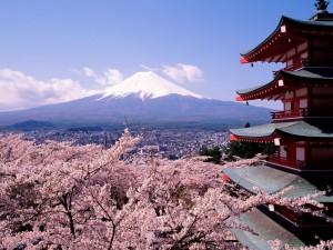 Япония, туризм, отдых